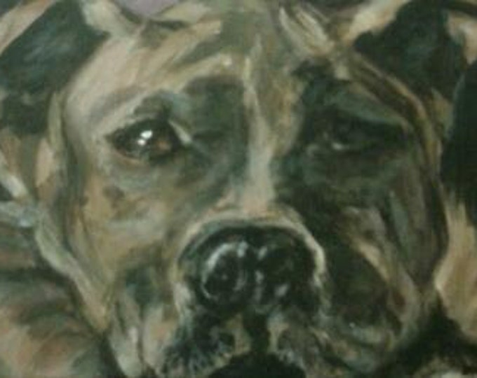 Unique,Gift,Pet,Portraits, Custom, one of a kind,upcycled, fine, art, painting, flannel, canvas,christmas, shoes, art, dog, dogs, cat, cats