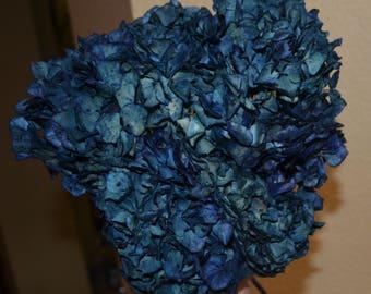 Hydrangeas,  Preserved hydrangeas, Blue hydrangeas, Deep blue hydrangeas