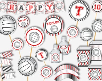 """Volleyball All Star Sports Team Theme Birthday Party 9/"""" Paper Dinner Plates"""