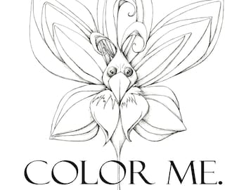 Color Me 2020 - Digital Download - Coloring Book,  26 surreal and whimsical creatures to color