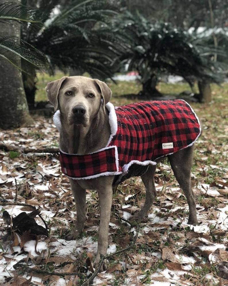 Custom Fitted Winter Pet Coat image 0
