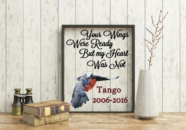Pet Memorial Frame Your Wings Were Ready Quote But My Heart Was Not