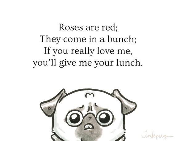 rosen sind rot lustig