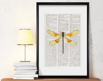 DRAGONFLY Dictionary Art Print, dragonfly art print, dragonfly wall art, dragonflies wall decor, dragonfly decor, insects, home decor, #201