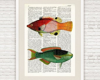 FISH PRINT art over DICTIONARY old page, Dictionary Art Prints, scientific illustration, Whimsical decor, Colorful Kids bedroom, #031