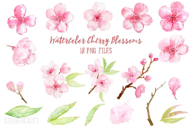 Watercolor Clipart cherry blossoms pink flowers spring   Etsy