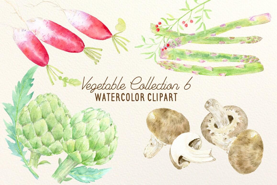 Aquarell Gemüse Kollektion 6 Pilze Spargel Radieschen und