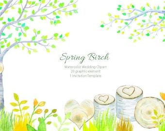 Wedding clipart - watercolor spring birch tree, birch tree in fresh spring color,  printable instant download