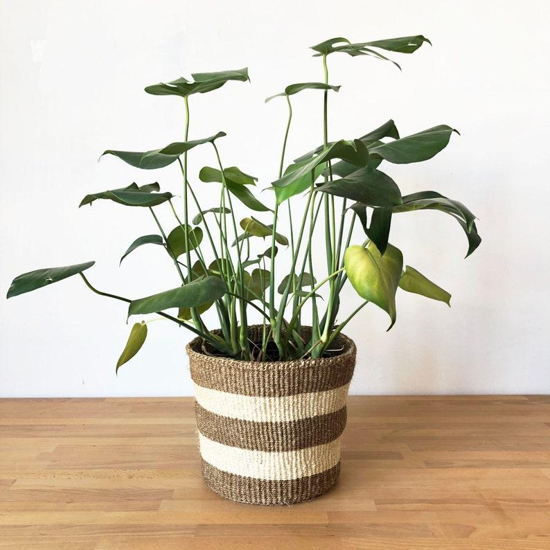 Panier moyen africain // Kenya Kiondo Basket // Planteur Sisal | Etsy