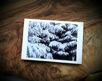 Pine Branches Forest Art Photographic Cards - Winter Twilight Snow Woodland Photograph Greeting Christmas Card - Made to order