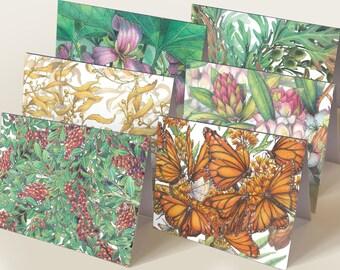 """Illuminations set of 12 botanical illustration greeting cards 5.5"""" x 4.25"""""""