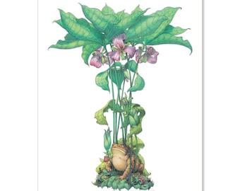 "Trillium - Toad Shade, botanical illustration greeting card 5"" x 7"" PACK OF SIX"