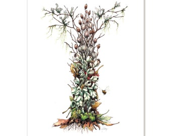 """Indian Pipe - Ghost of the Forest, botanical illustration greeting card 5"""" x 7"""" SET OF SIX"""