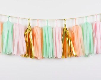 """9"""" Pink Mint Peach Tassel Garland, Mint Pink Garland, Mint Peach Garland, Peach Baby Shower, Pink Peach Birthday, Peach First Birthday"""