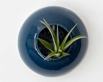 Home décor vase blue aerial plants to hang on wall for ceramic tillandsia Sea Creatures Medusa (plant not included)