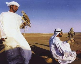 Original Oil Painting, Hunting with falcons, Animal painting, Desert, Hyperrealism, Bedouins, Falcon, Eagle painting, Wild Birds, Saffari
