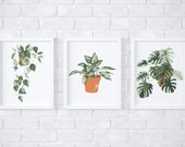 Tropical Potted plants paint by number kit/mothers day gift/custom paint by number/kids craft kit/adult coloring kit/modern paint by number
