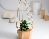 Modern Faceted Geometric Planter - for Air Plant, Succulent and Cacti - Wood Brass Polygon Gem