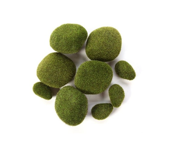 Wedding Moss Balls For Centerpiece Or Special Events Moss Etsy