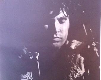 Jim Morrison The Doors Vintage 1968 Rock Poster Hippie era