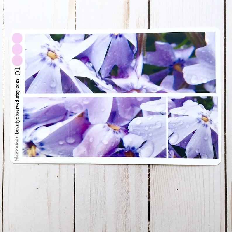 phlox planner stickers  purple  phlox photo stickers  full image 0
