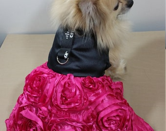 Rose Magenta Hund Kleid