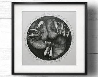 Sleeping Badgers - A4 Sq Giclée Print by Sam Cannon - Badgers curled up, graphite pencil drawing with compassionate animal rights quote