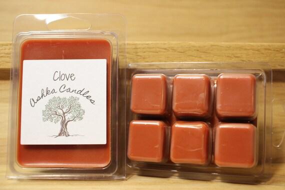 Cinnamon Wax Melt Christmas wax melt Clove Wax Melt teacher gift Great Gift Idea Spice Wax Melt Clove Soy Wax Melts Fall Wax Melt