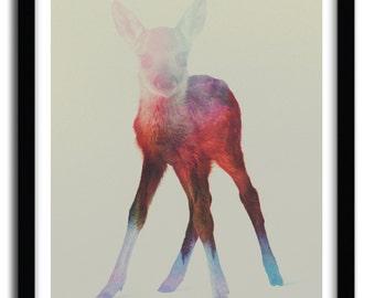 Affiche deer fawn par Andreas Lie