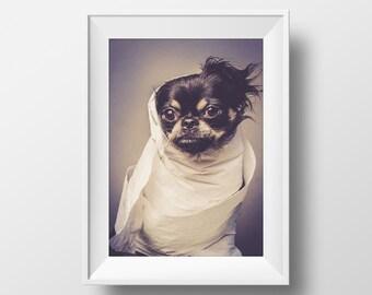 Chihuahua Photo, Dog Portrait, Chihuahua Puppy Print, Humorous Dog Photo, Fine Art Animal Print, Black Dog Face, Home Decor, Dog Lover Gift