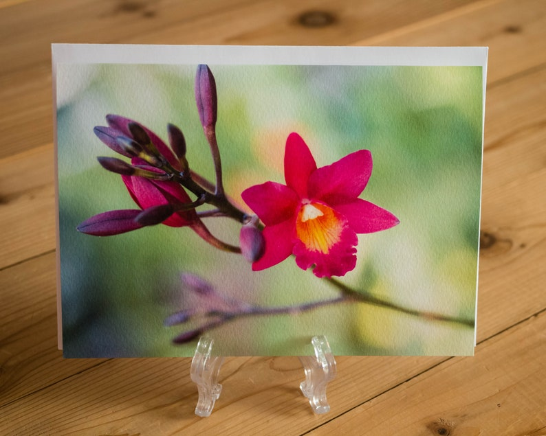 Pink Orchid 5x7 Note Card with Envelope  Single image 0