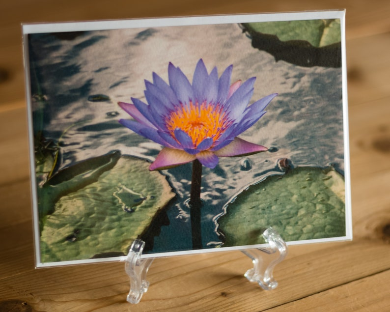 Water Lily 5x7 Note Card with Envelope  Single image 0