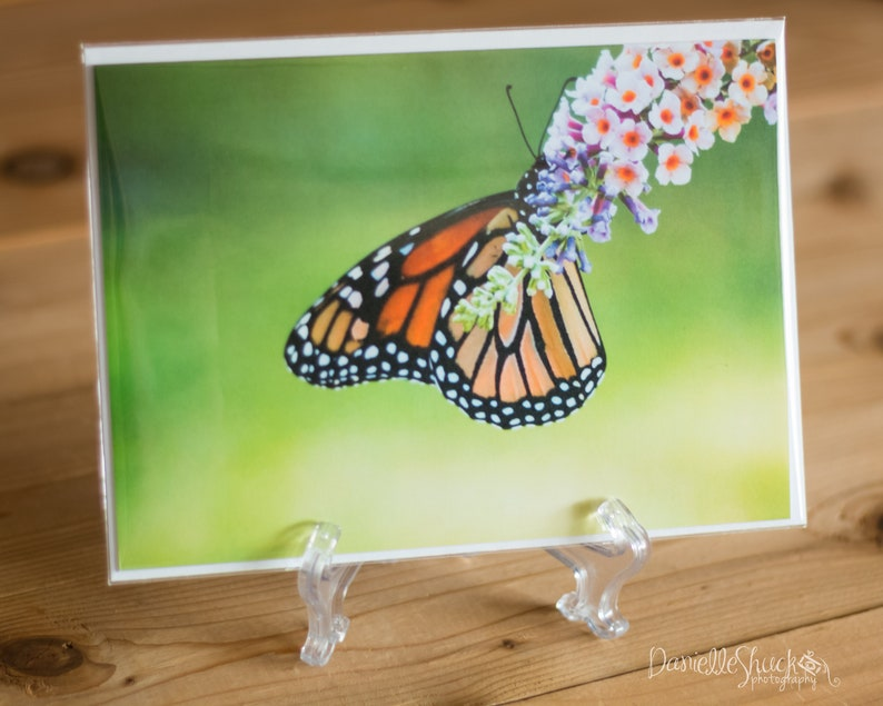 Monarch 5x7 Note Card with Envelope  Single image 0