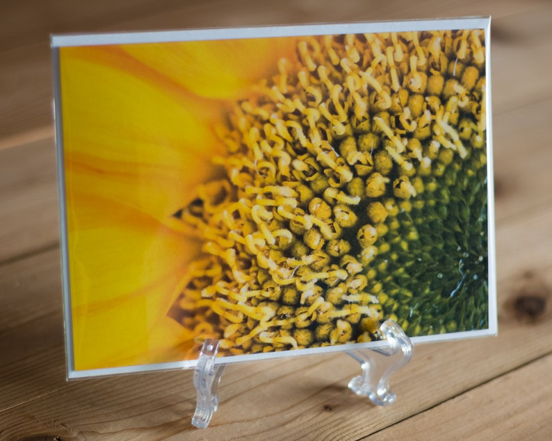 Sunflower Detail 5x7 Note Card with Envelope  Single image 0