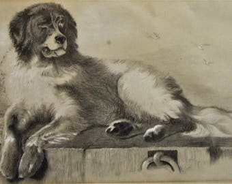 Original antique conte drawing St Bernard signed HET 1888 framed art Dog Lover Owner small art New Home divorce Gift Worldwide freight