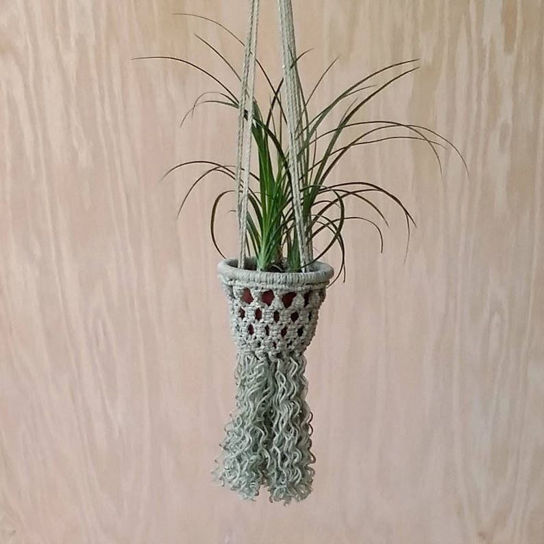 Porte Plante En Macramé Mini Vert Avec 2 Ponytail Palm Etsy