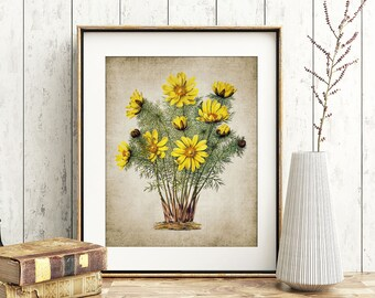 ccb8fead132 Yellow Flowers Print - Yellow Flower Illustration - Botanical Flower Art - Digital  Art - Printable Art - Single Print  53 - INSTANT DOWNLOAD