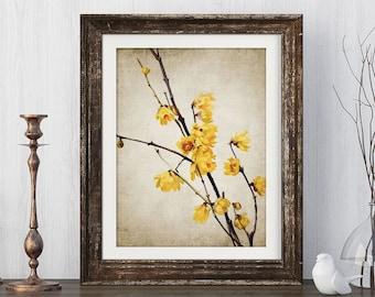4b85b4e8dec Yellow Flowers Art Print - Yellow Flower Decor - Tree Blossom - Flower Print  - Single Print  85 - INSTANT DOWNLOAD