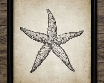 Vintage Starfish Print - Starfish Art - Marine Biology Illustration - Ocean Art - Bathroom Decor - Single Print #927 - INSTANT DOWNLOAD