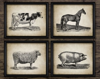 Vintage Farm Animals Print Set Of 4 - Farming Illustration - Pig - Sheep - Horse - Cow - Set Of Four Prints #689 - INSTANT DOWNLOAD