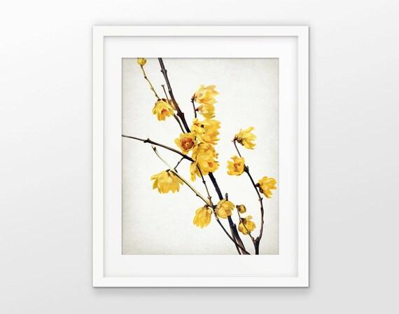 2df96f8dd59 Yellow Flowers Art Print - Yellow Flower Decor - Tree Blossom - Flower Print  - Single Print  1617 - INSTANT DOWNLOAD