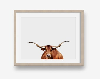 Longhorn - animal printable, country, modern, minimalist print, printable photography, cow photo, nursery art printable, cow print
