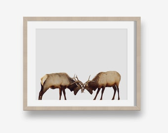 Deer Print - animal printable, woodlands print, modern, minimalist print, printable photography, deer photo, nursery art printable, twins