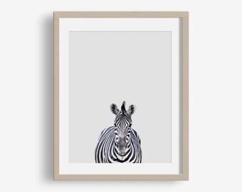 Zebra Print - animal printable, safari, modern, minimalist print, nursery decor, nursery animals, jungle, photo, nursery art printable