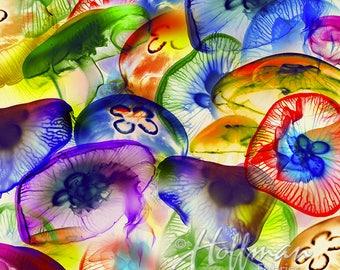 Hoffman Fabrics Raving Tides Rainbow Jellyfish Digital Print Cotton Fabric P4384-130-Multi