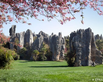 Stone Forest, Kunming, China. Nature Landscape photography, photo print for home and office