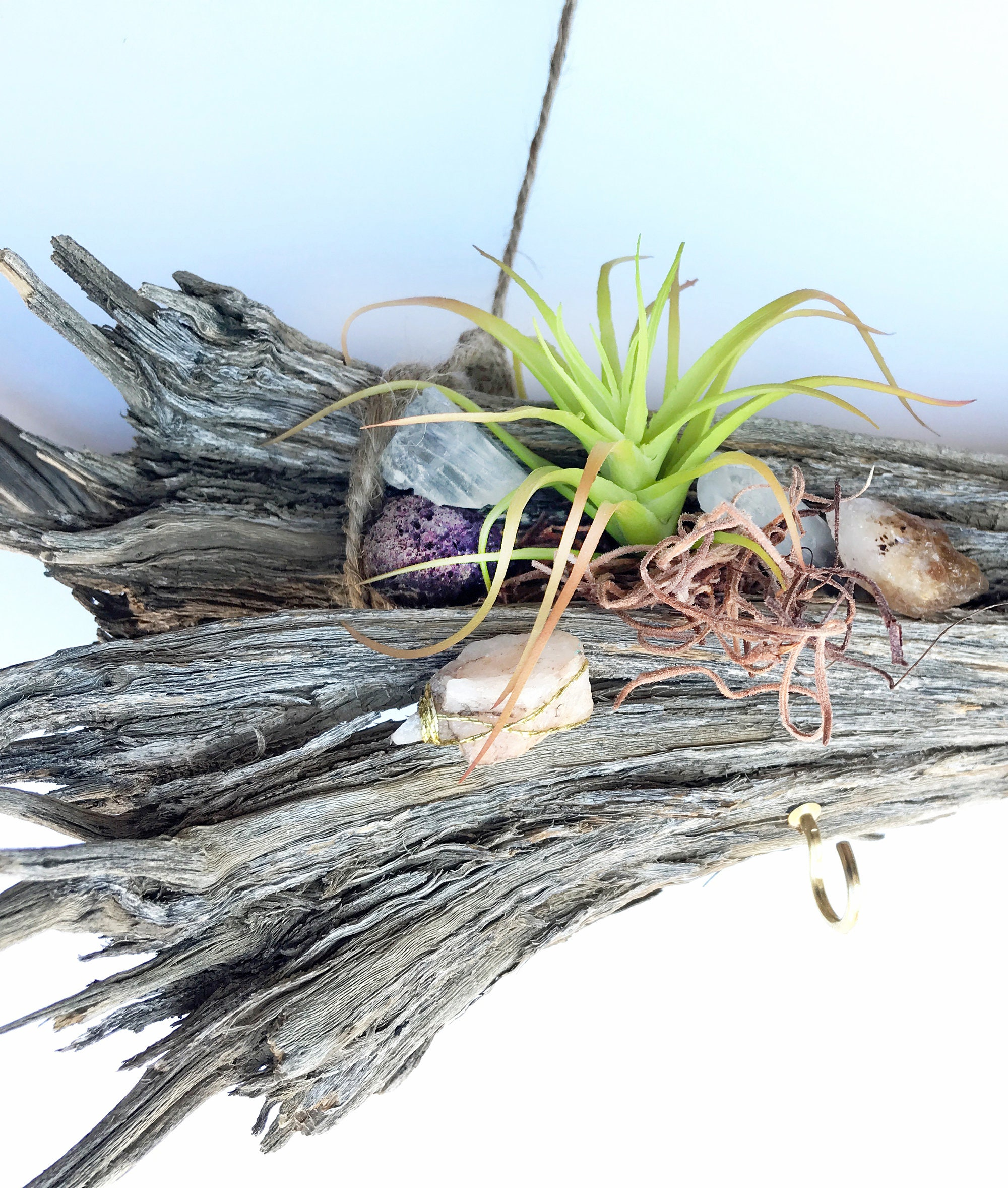 Handmade Air Plant Wall Hanging Driftwood Branch Decor Succulent Wall Art Meditation Decor Beach Wall Decor Boho Jewelry Holder Display