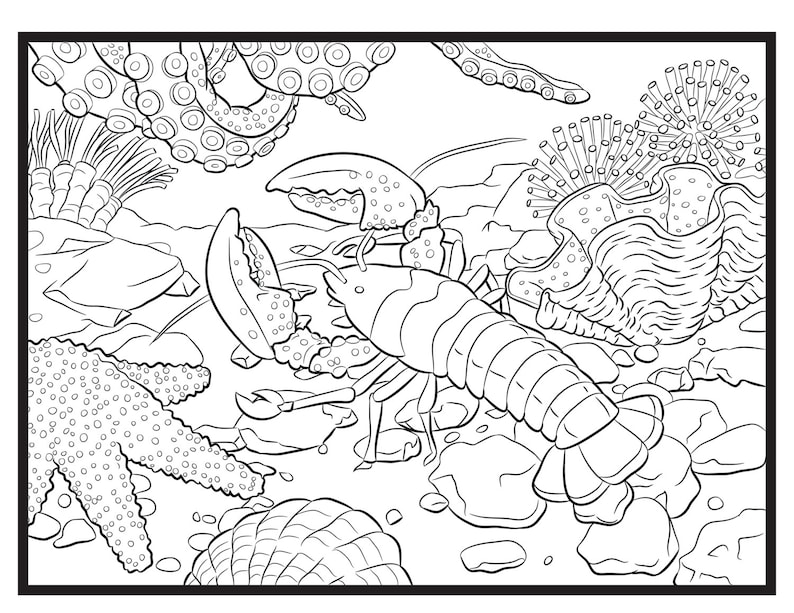 Lobster Single Coloring Page image 0