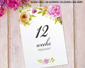 Pregnancy Milestones Cards Baby Maternity - Mummy to be Present Gift, 12 pack FLC_01
