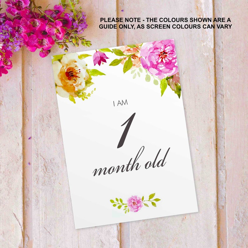 Baby Milestone Cards Maternity leave present gift baby shower image 0